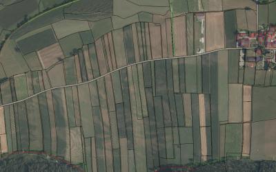 Zusammenlegungsgemeinschaft Tristach – Fortsetzung der Kultivierungsarbeiten